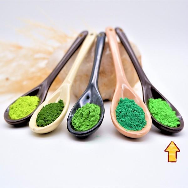 Lehmwelt Pigment Wiesengrün